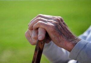 حمایت از ۱۶۵ سالمند نیازمند بافقی در قالب طرح منزلت