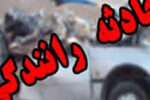دومصدوم براثربرخورد دوکامیون در محور بافق-بهاباد